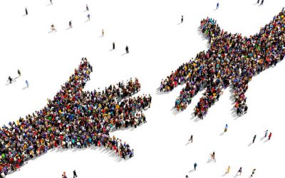 Why 2019 is the year of stakeholder trust
