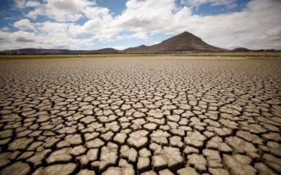 COP25 : une réponse aux préjudices subis par les pays africains ?
